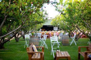 חתונה בטבע (2)